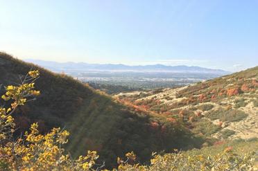 Corner Canyon Mountain Bike Trail