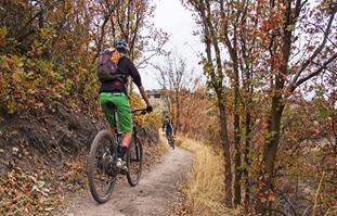 Mountain Bike Trails in Utah Fall